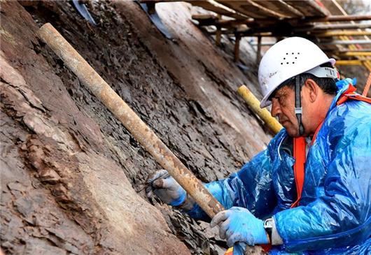 Chinese, Greek experts preserve dinosaur footprints in Beijing