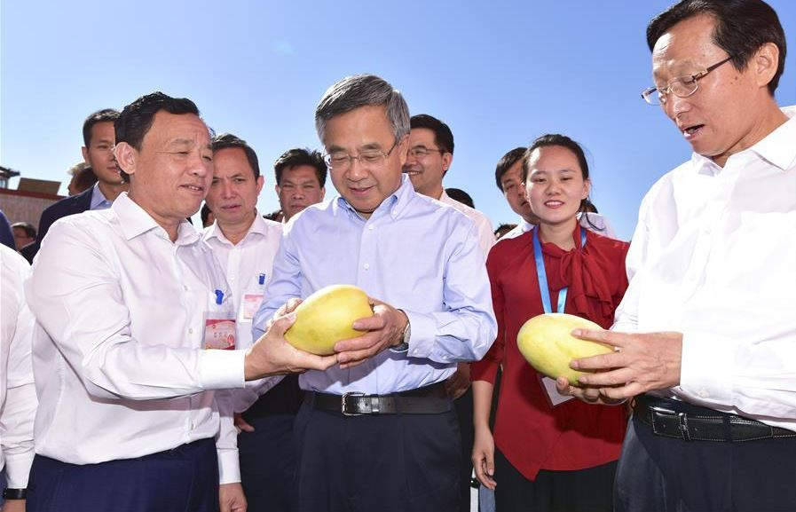Chinese vice premier stresses poverty relief through relocation