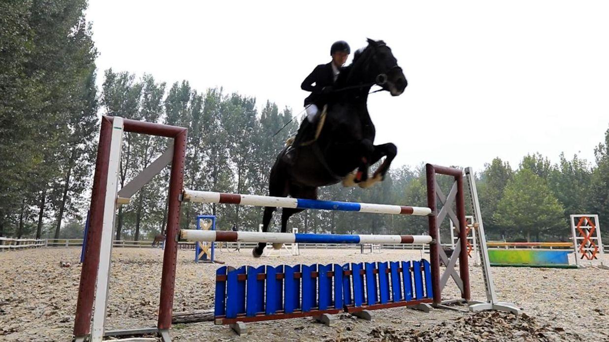 China and Belgium's equestrian bond