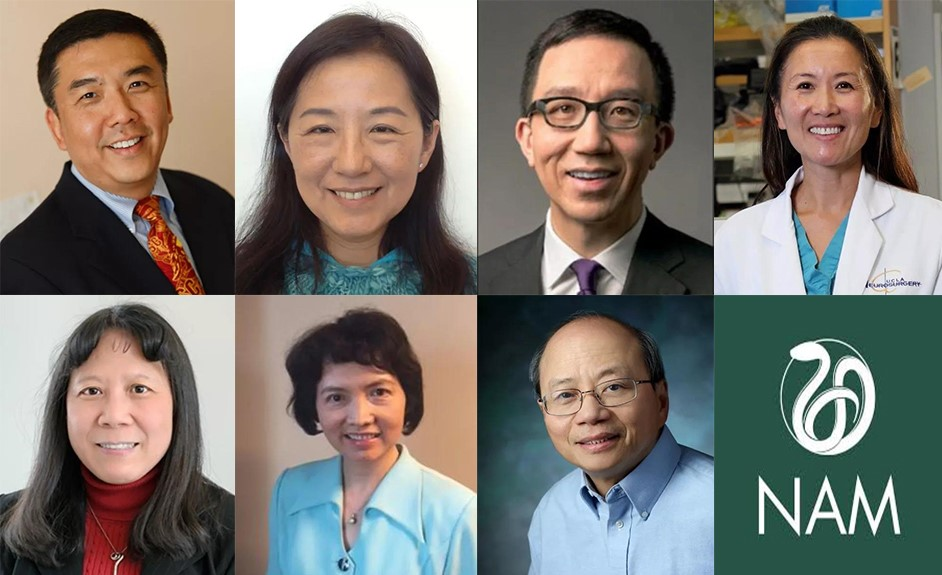 Elite US Medicine Academy awards membership to Chinese-American doctors