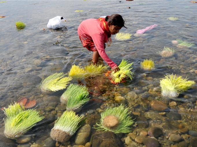 In pics: Hindu festival Navratri in Indian-controlled Kashmir