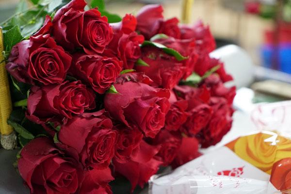 A file photo of Kenyan roses. [Photo: China Plus/Yang Qiong]