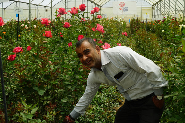 Tushar Vyas is in charge of a flower farm under the Subati Flowers near the Naivasha Lake in Kenya. [Photo: China Plus/Yang Qiong]