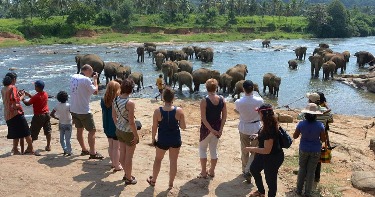 Sri Lanka ranked No.1 travel destination in 2019 by Lonely Planet
