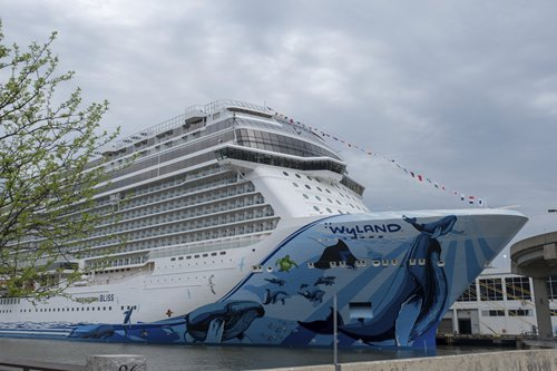 Overseas cruise operators leave China after misreading market