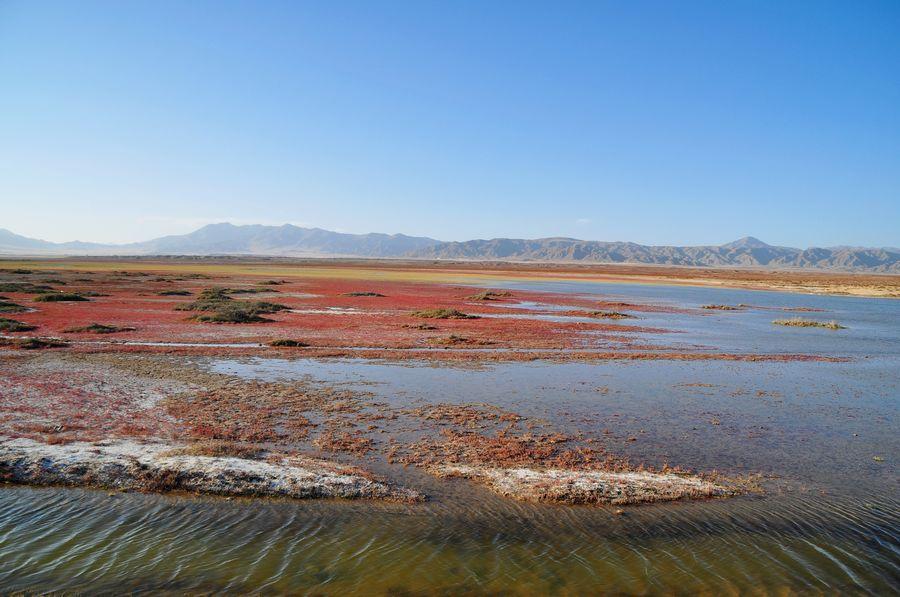 Yematan: A wonderland in Qinghai