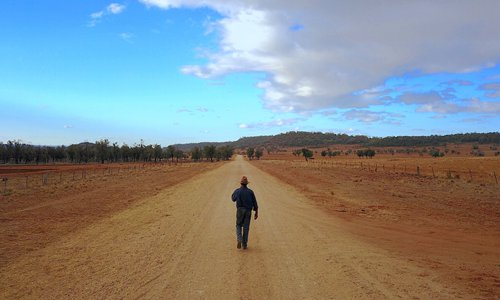 Australian gov't to spend 5 bln USD to help farmers fight drought
