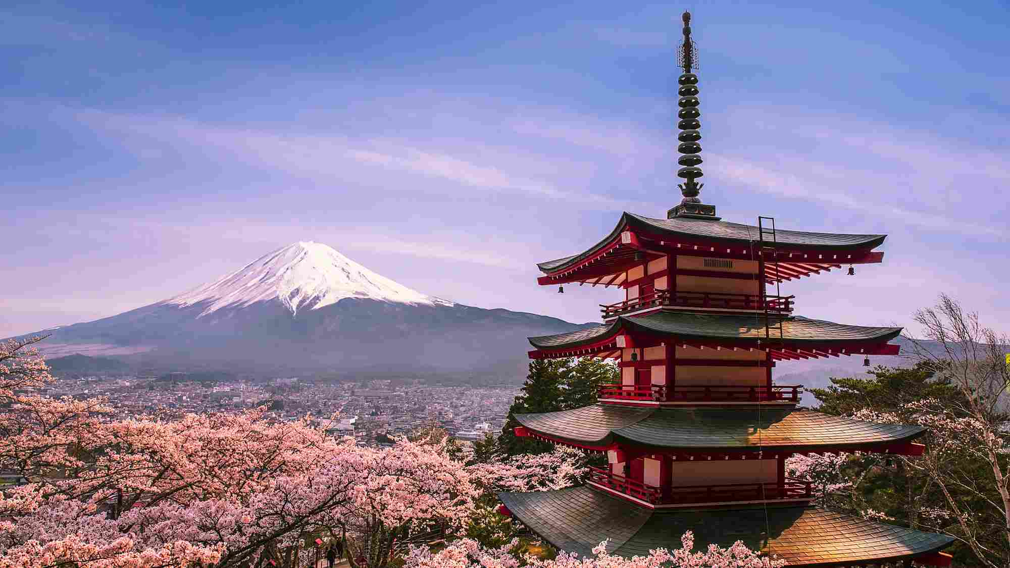 Japan to relax visa policies for Chinese visitors next year