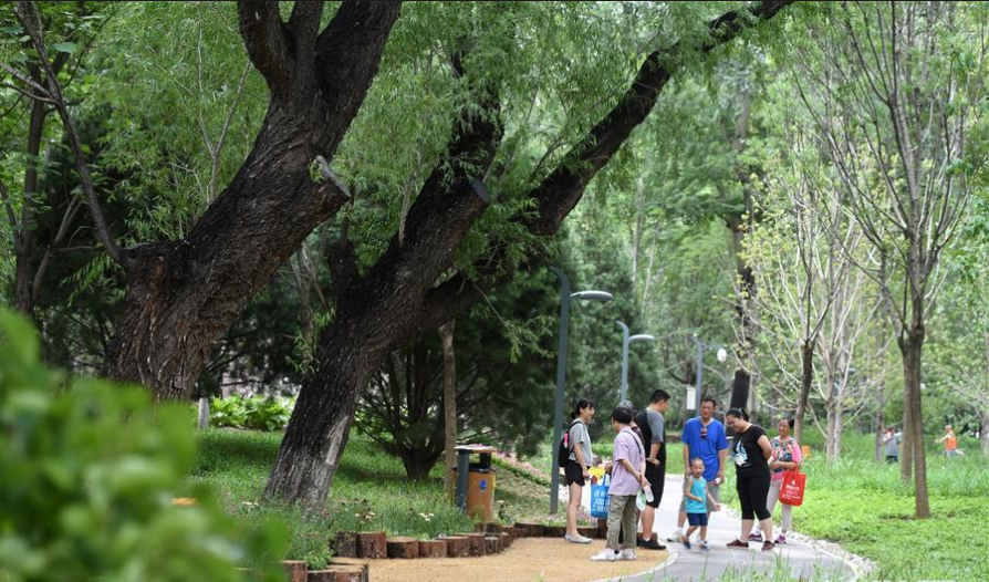 Beijing to turn obsolete landfill into forest park