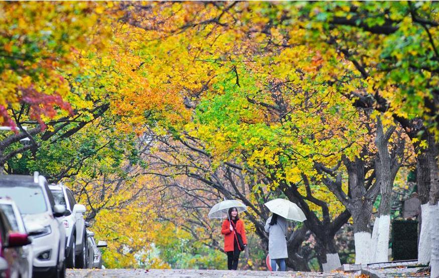 Tourists go sightseeing in rain at Badaguan scenic area in Qingdao