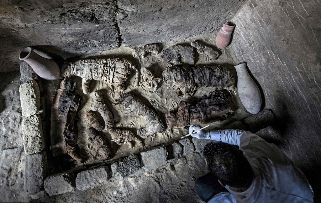 Mummified cats found in Egyptian pyramid complex