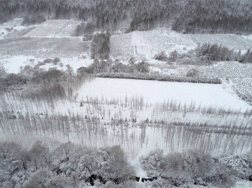 Snow to hit parts of northwest China, smog to hit north