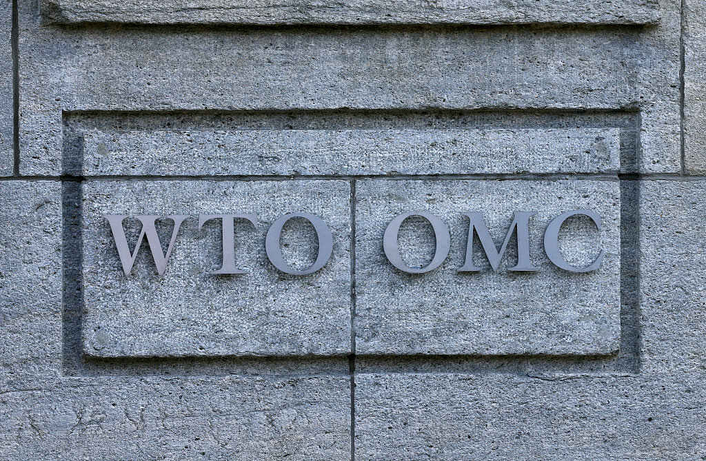 WTO handling largest number of trade disputes in 16 years: director-general