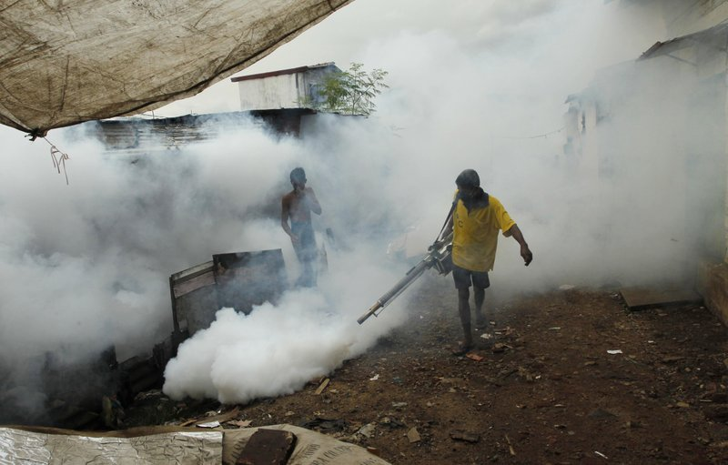 WHO to lead stalled global fight against malaria back on track