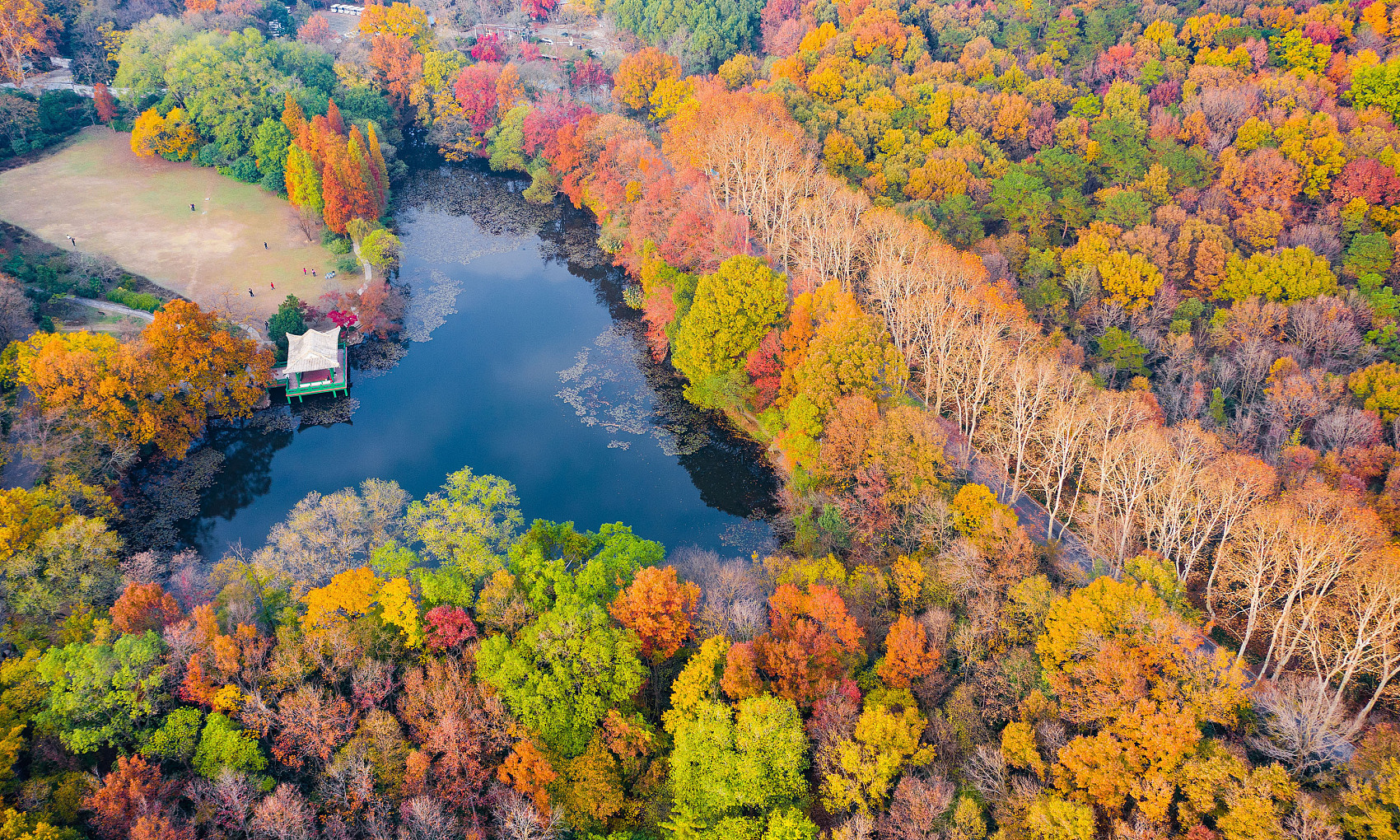 Zhongshan Mountain takes on a colorful look as winter comes