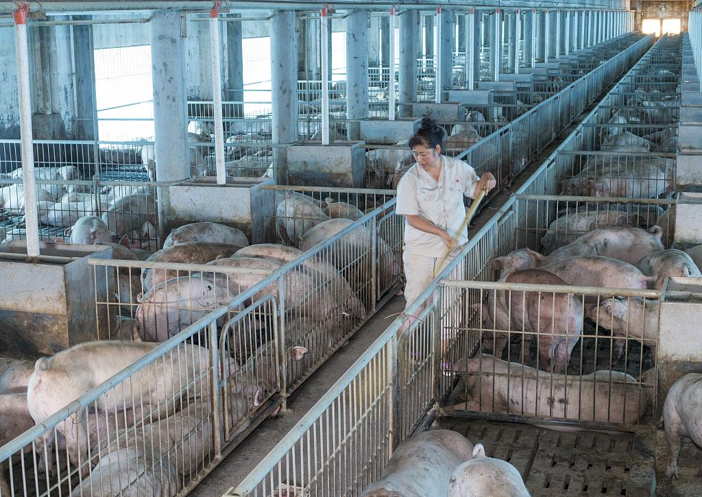 African swine fever outbreak in Beijing suburb