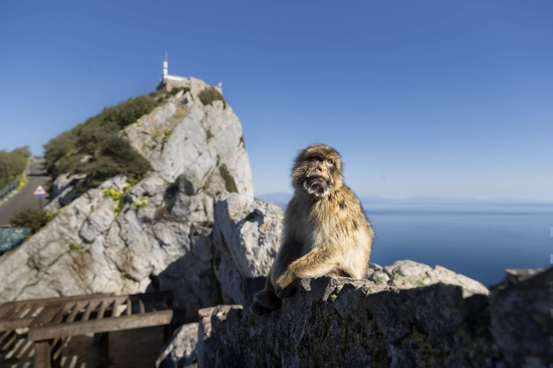 Brexit deal almost done, but Spain holds out over Gibraltar