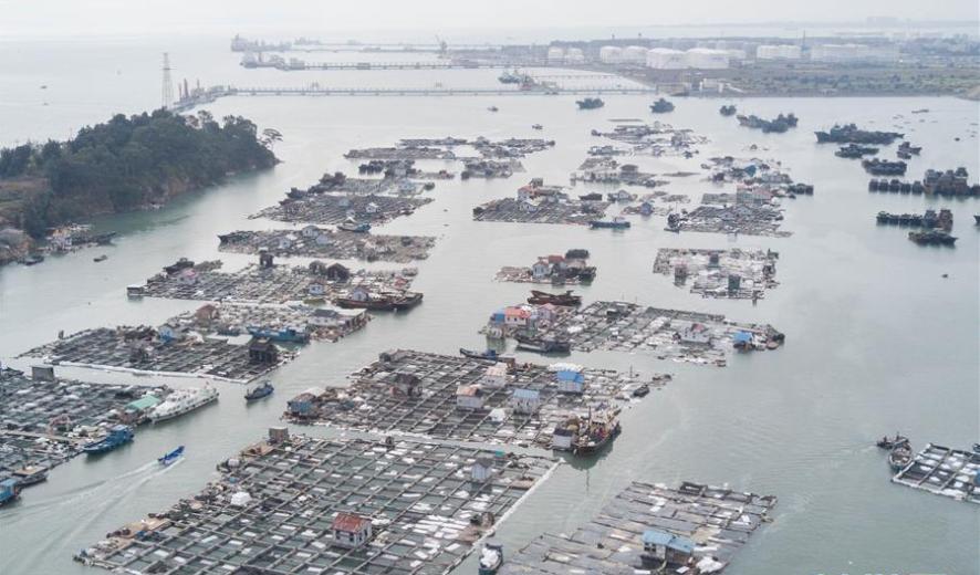 7 arrested for chemical leak in Fujian