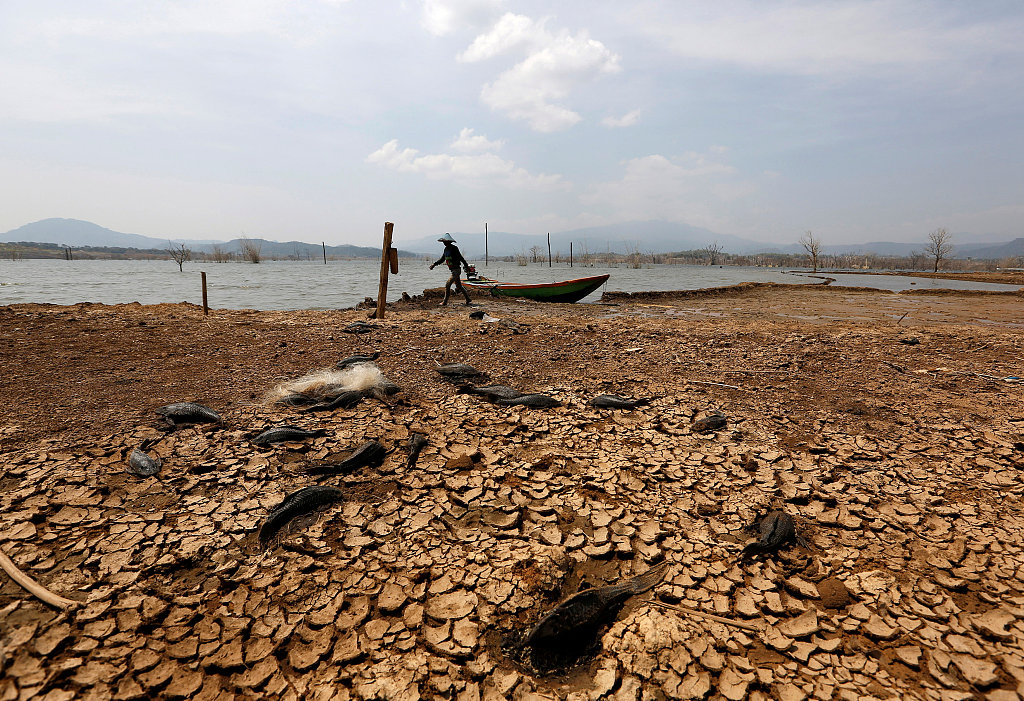 2018 temperatures set to be among hottest on record: UN