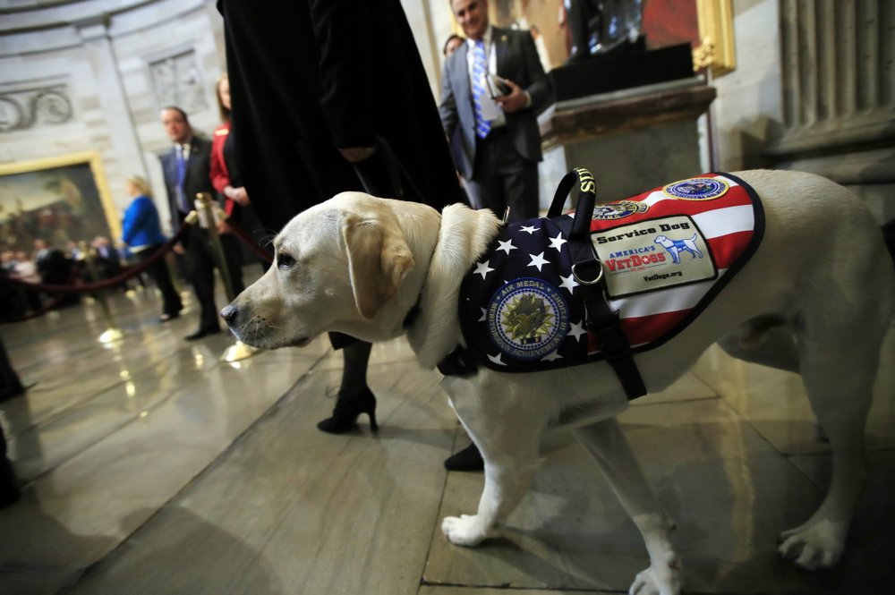 Bush saluted by CIA comrades; service dog Sully comes, too