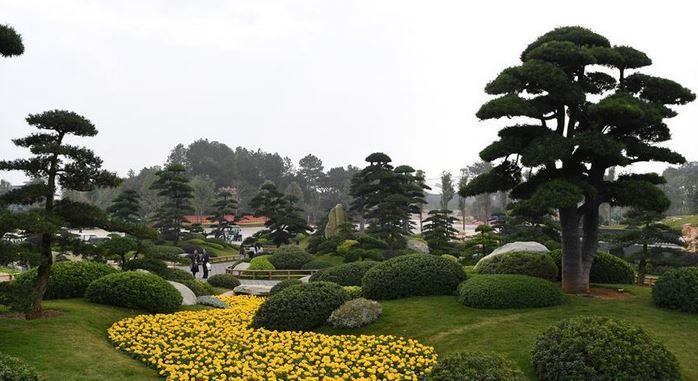 China International Garden Expo held in Nanning