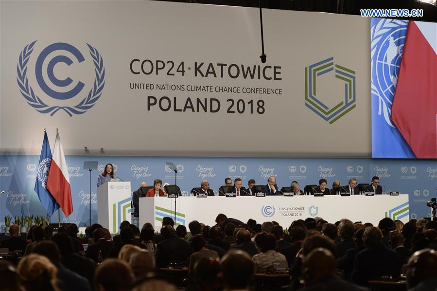 Failing to agree on climate action would be 'suicidal': UN chief