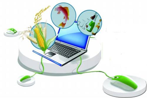Farmers find new business opportunities through webcasts