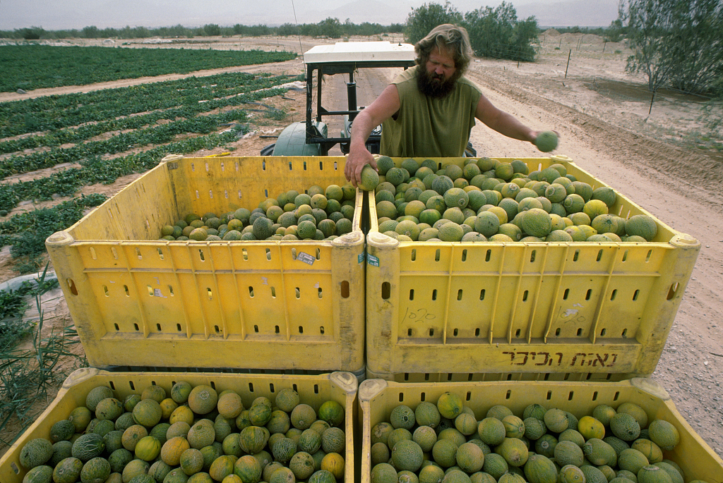 israel fruit.jpg