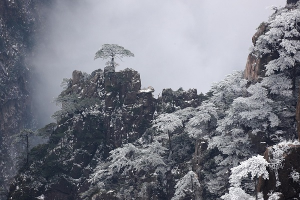 Beautiful snow makes Huangshan a wonderland