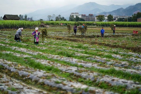 China holds key meeting to outline roadmap for 2019 rural work