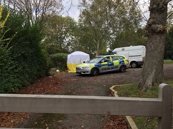 Woman stabbed to death in south London on New Year's Day