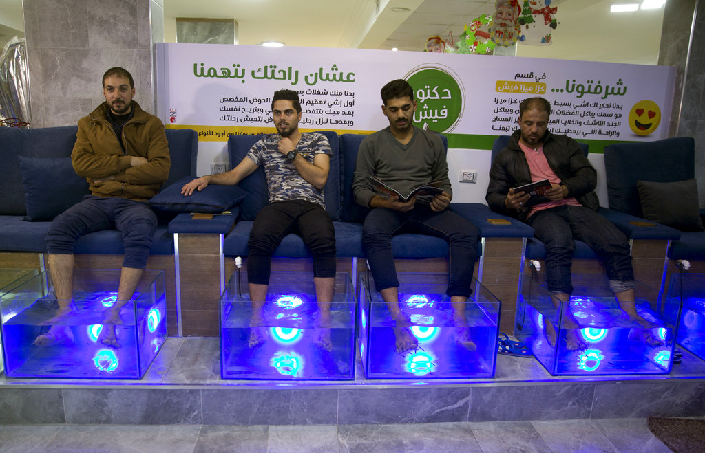 Gaza cafe owner offers fish pedicures to improve business
