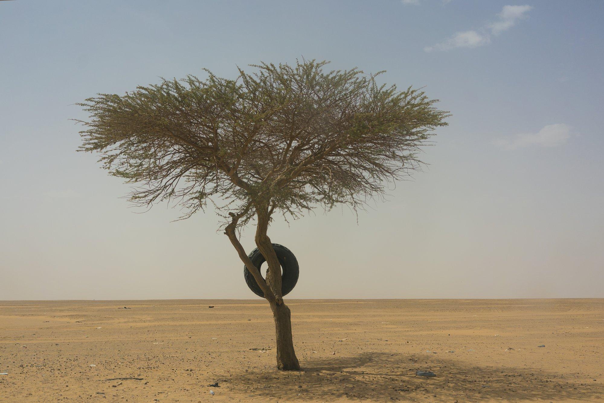 Sahara desert swings between wet and dry every 20,000 years: study