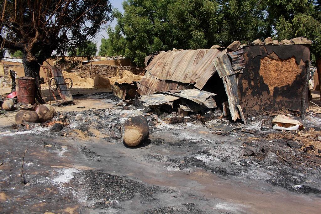 Niger army kills at least 280 Boko Haram militants: ministry