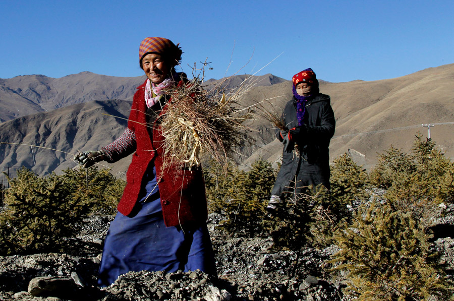 Capital city Lhasa leads poverty reduction in Tibet