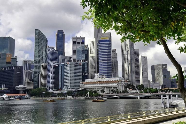 Singapore eco-tourism plan sparks squawks of protest
