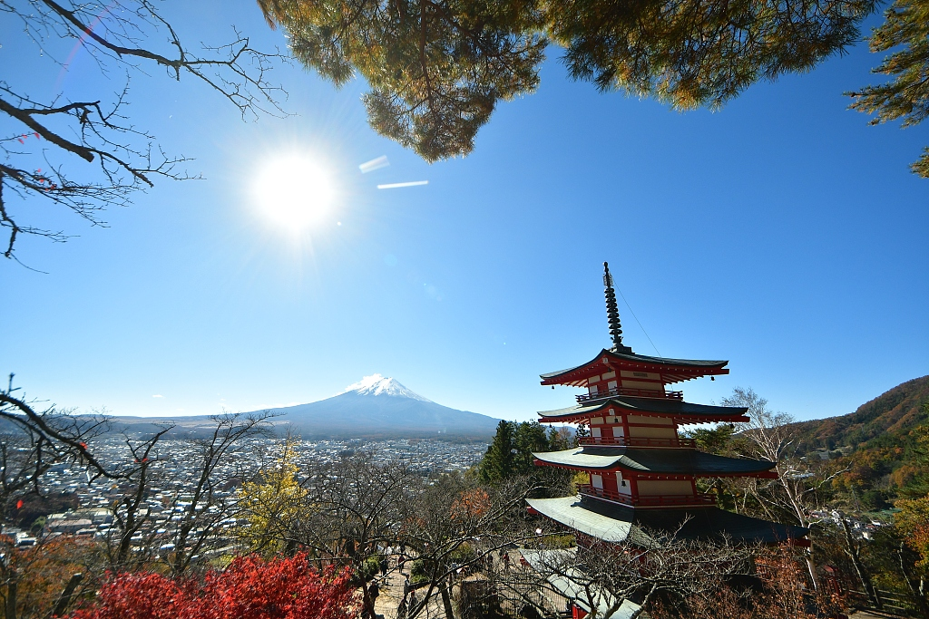 Japan hottest destination for Chinese tourists during Spring Festival holiday: report