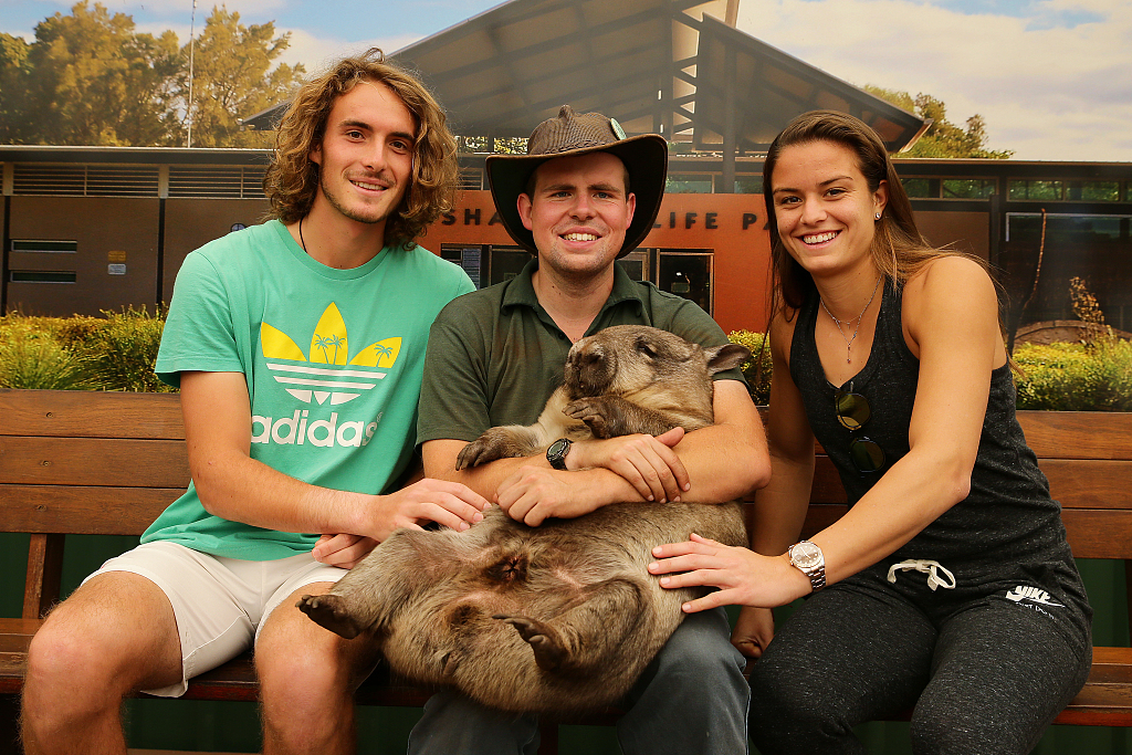 Tourists urged not to take selfies with Aussie wombats