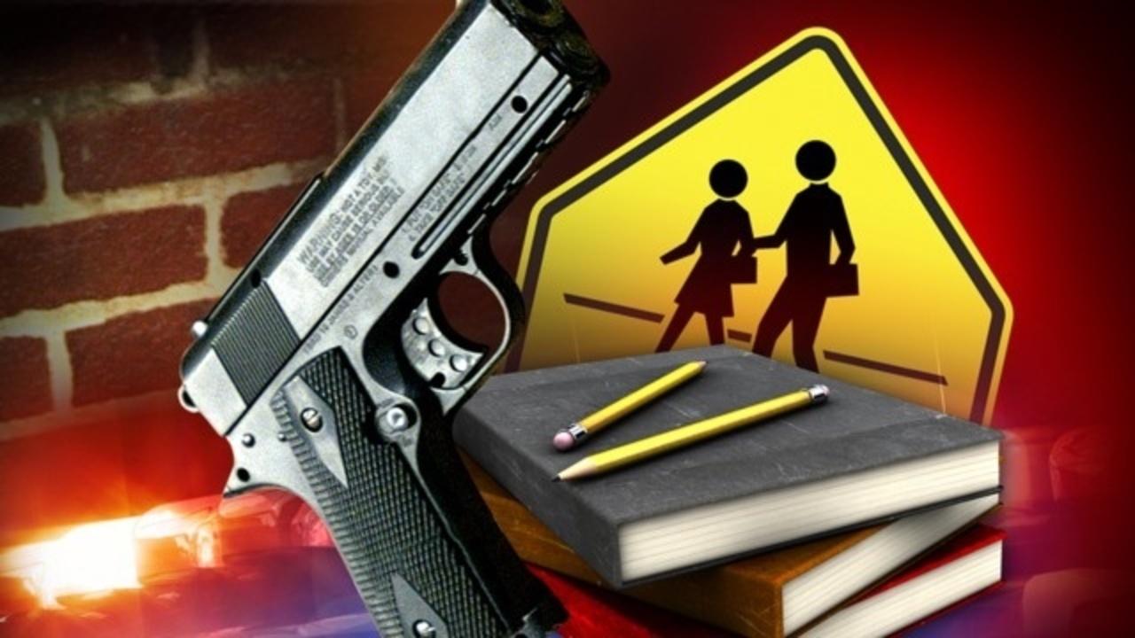 School guns.jpg