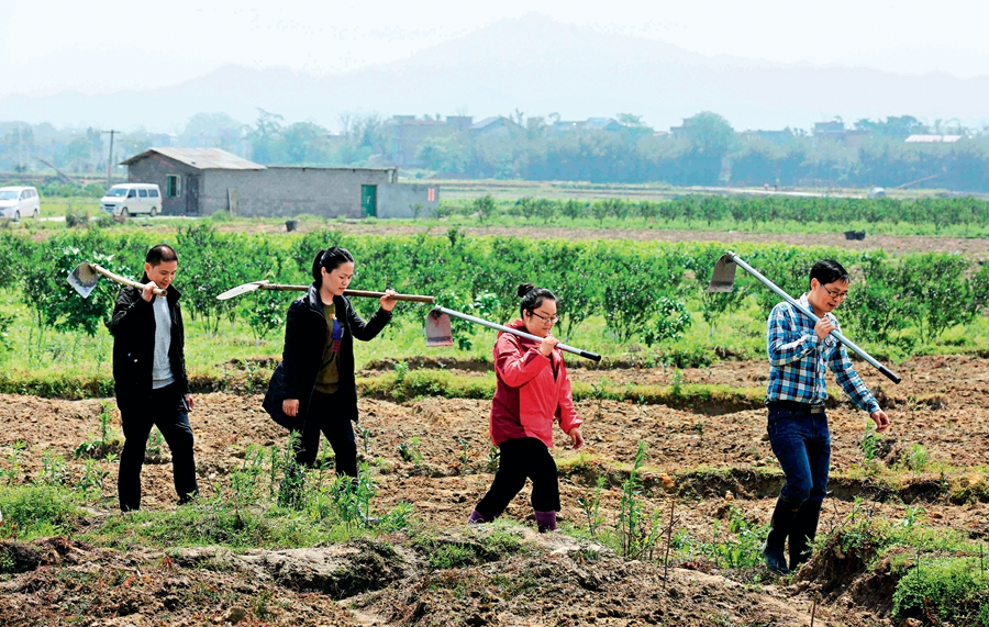 CPC issues new work rules on rural primary-level organizations