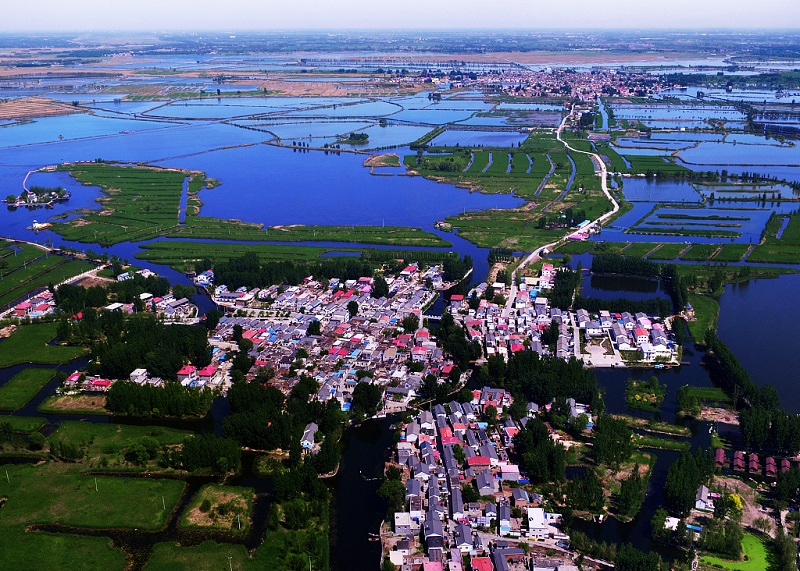 Xiongan New Area, Beijing's new sub-center are steadily developing high standards: officials