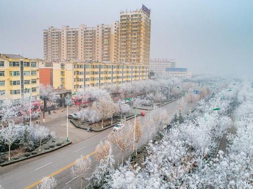 Rime scenery in Yuncheng City, north China's Shanxi