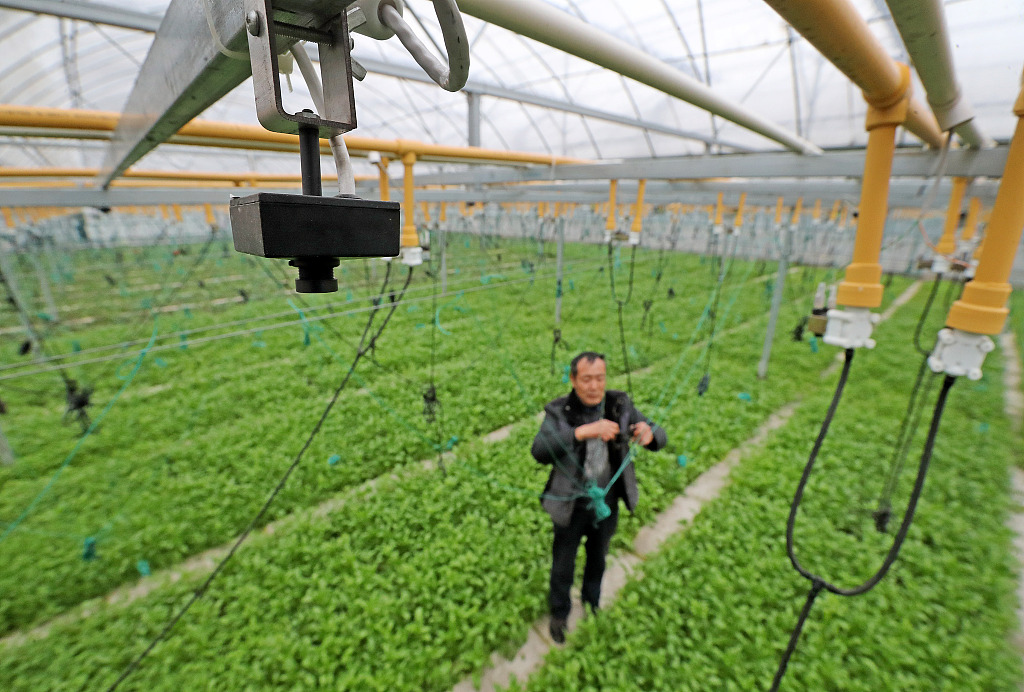 Internet of Things injects new momentum to agriculture-based tourism in Huzhou, Zhejiang