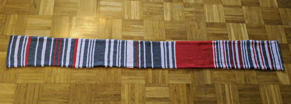 Commuter's 'delay scarf' bought by German train company