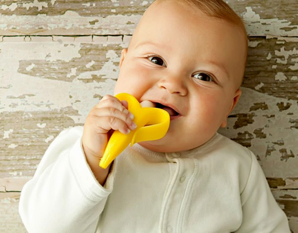 Gut bacteria from infants could prevent food allergy: study