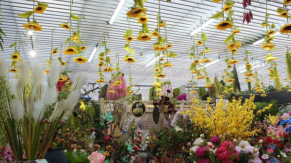 Online booking begins for Beijing horticultural expo tickets