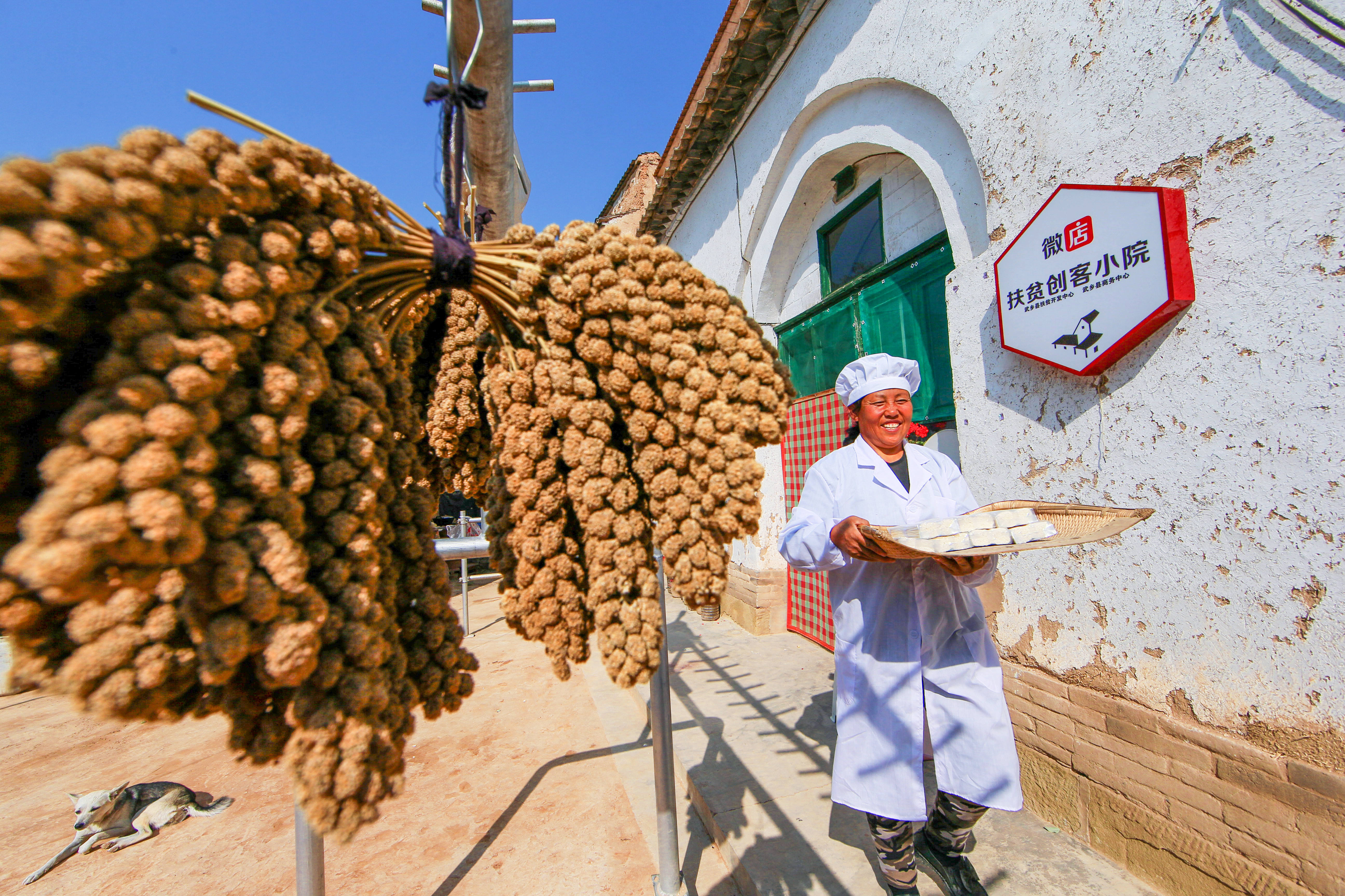 Chinese village eyes mobile Internet for poverty alleviation