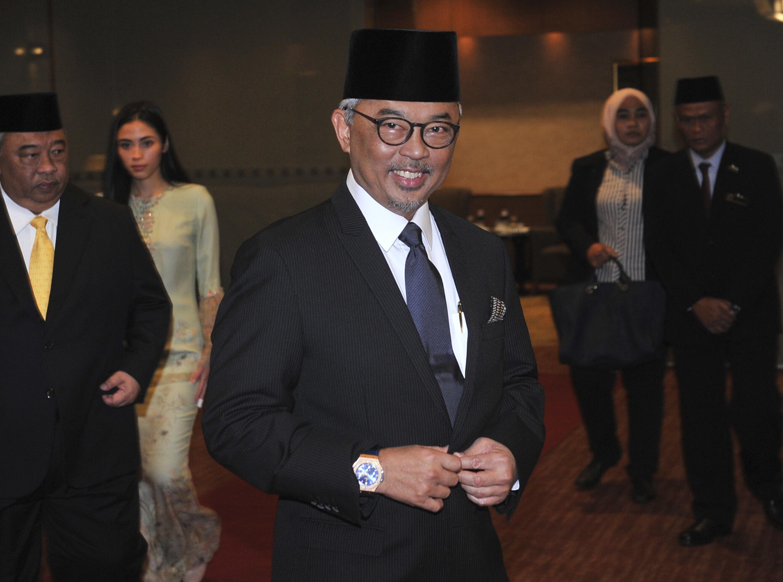 Malaysian King.jpg