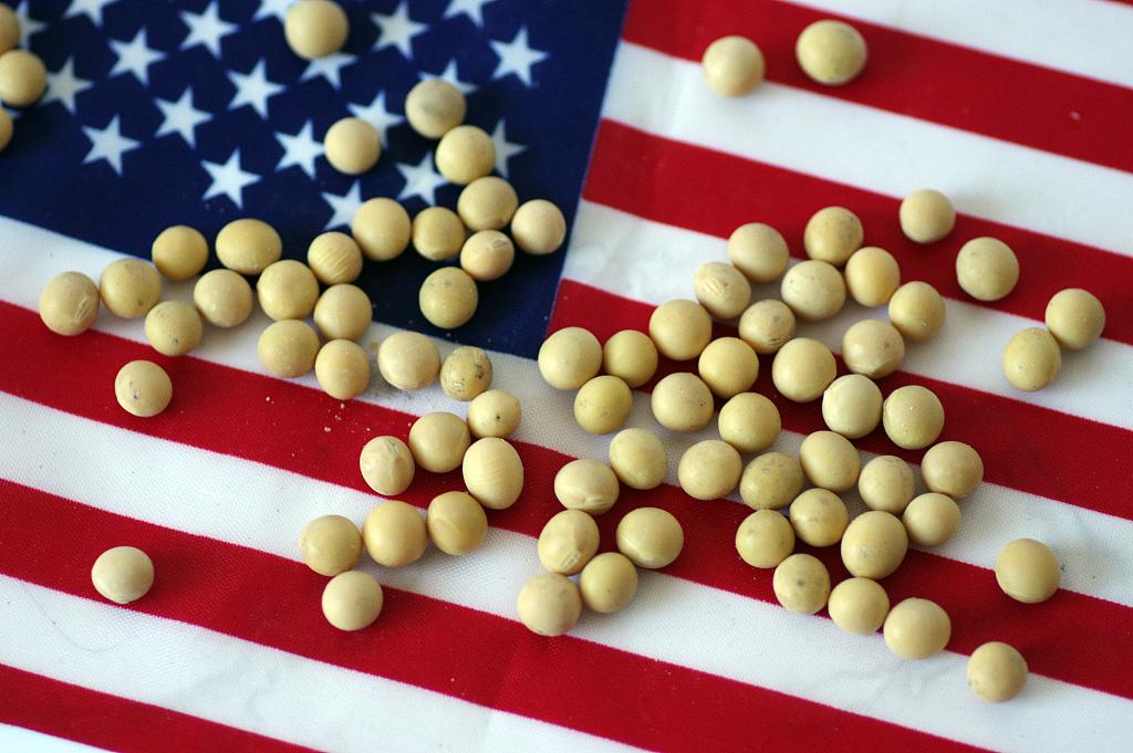 In nod to Trump, EU okays US soya for biofuels