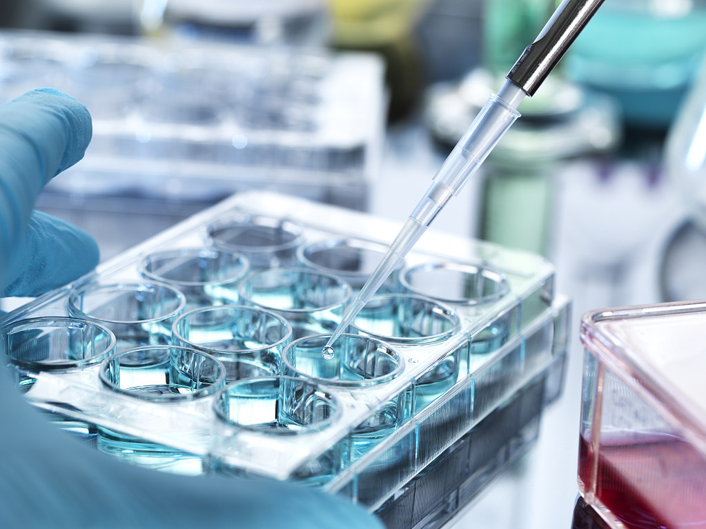 Australian scientists tap crucial protein pointing to better stem cell development